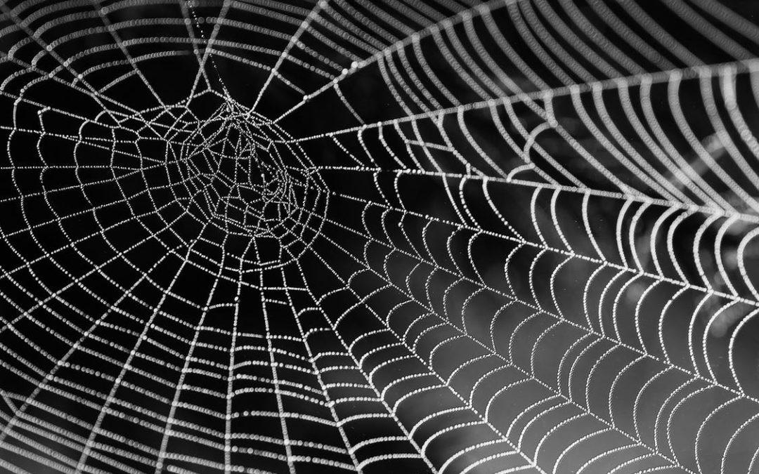 Comprendre comment fonctionne un lien pour créer de bons backlinks